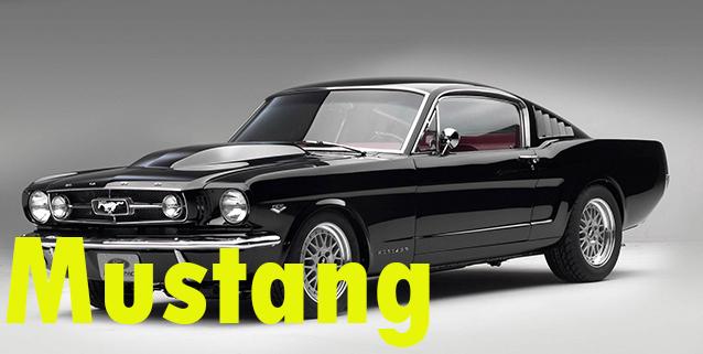 Защита картера двигателя для Ford Mustang