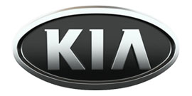 Защита картера двигателя для KIA
