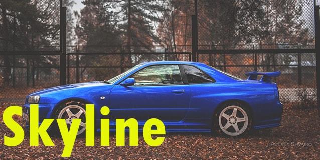 Защита картера двигателя для Nissan Skyline